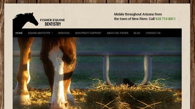 Fisher Equine Dentistry – First Website!