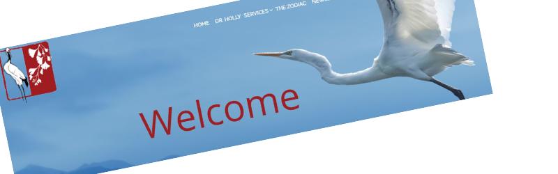 Just a Little Updating & Maintenance – Flying Crane Astrology